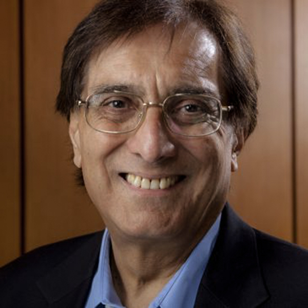 Professor Sudhir Anand
